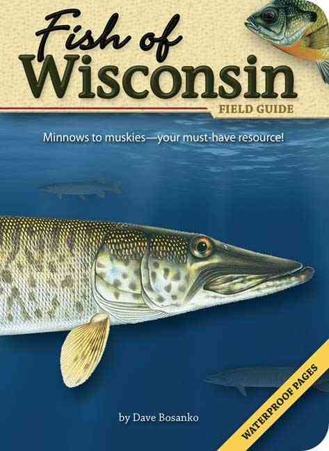Fish of Wisconsin Field Guide By Bosanko, David